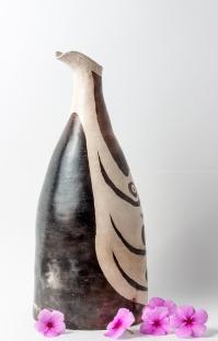 Cisne cuello blanco